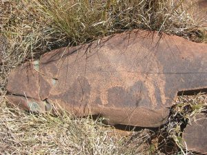 Kimberley | Wildebeest Kuil Rock Art Centre